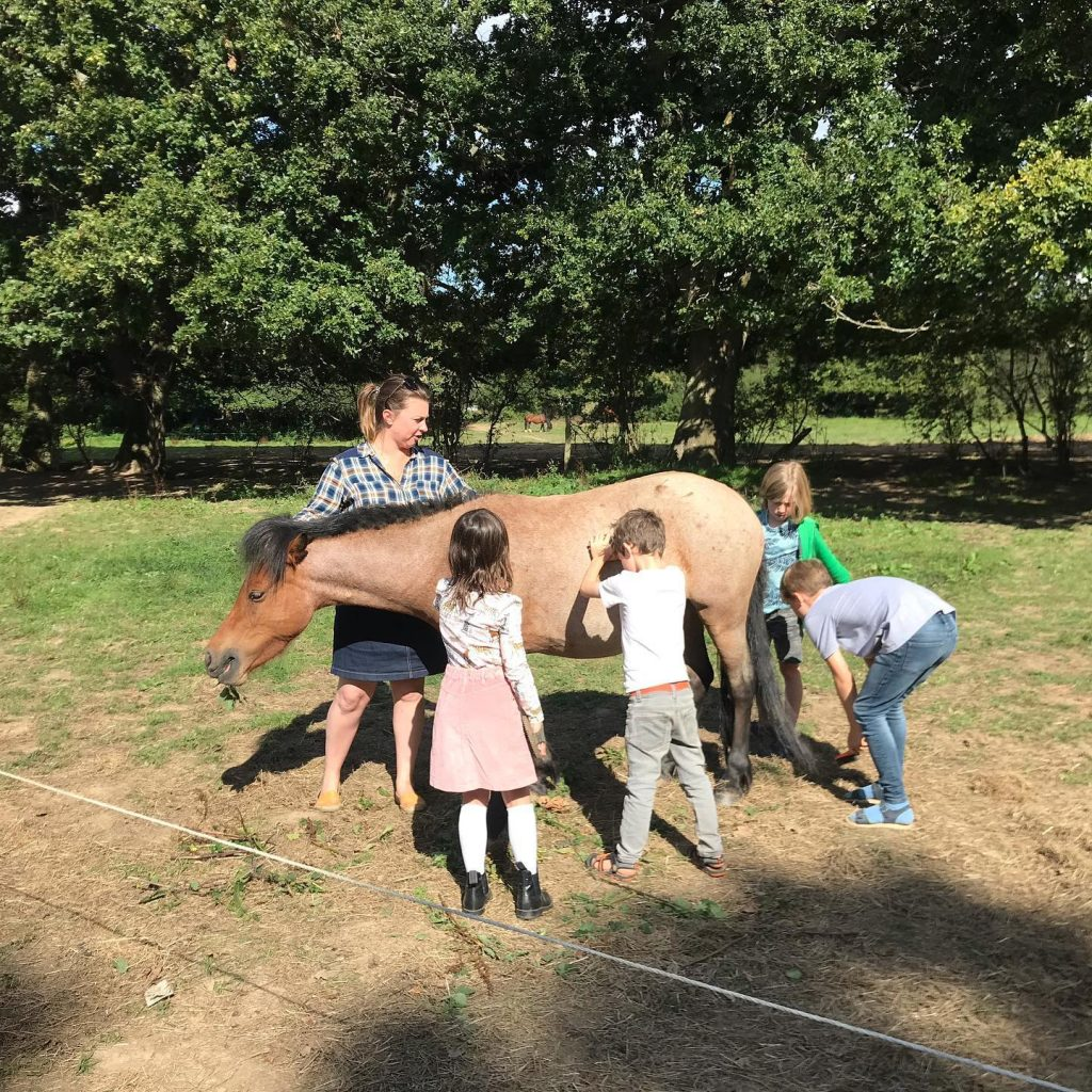 Family touching horse