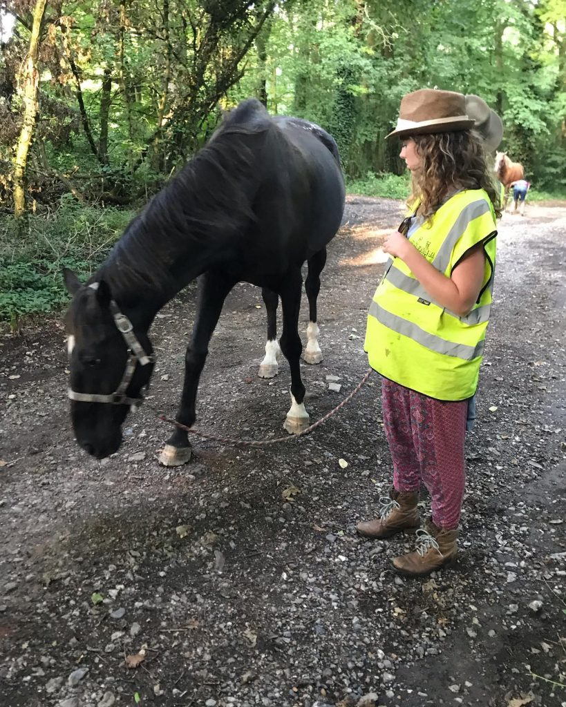 Lady and a horse