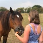 Girl feeding a pony